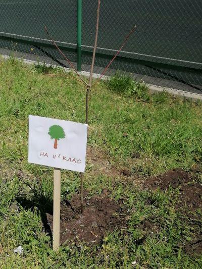 """Празник за Денят на Земята в СУ """"Петко Росен"""" - град Бургас 1"""